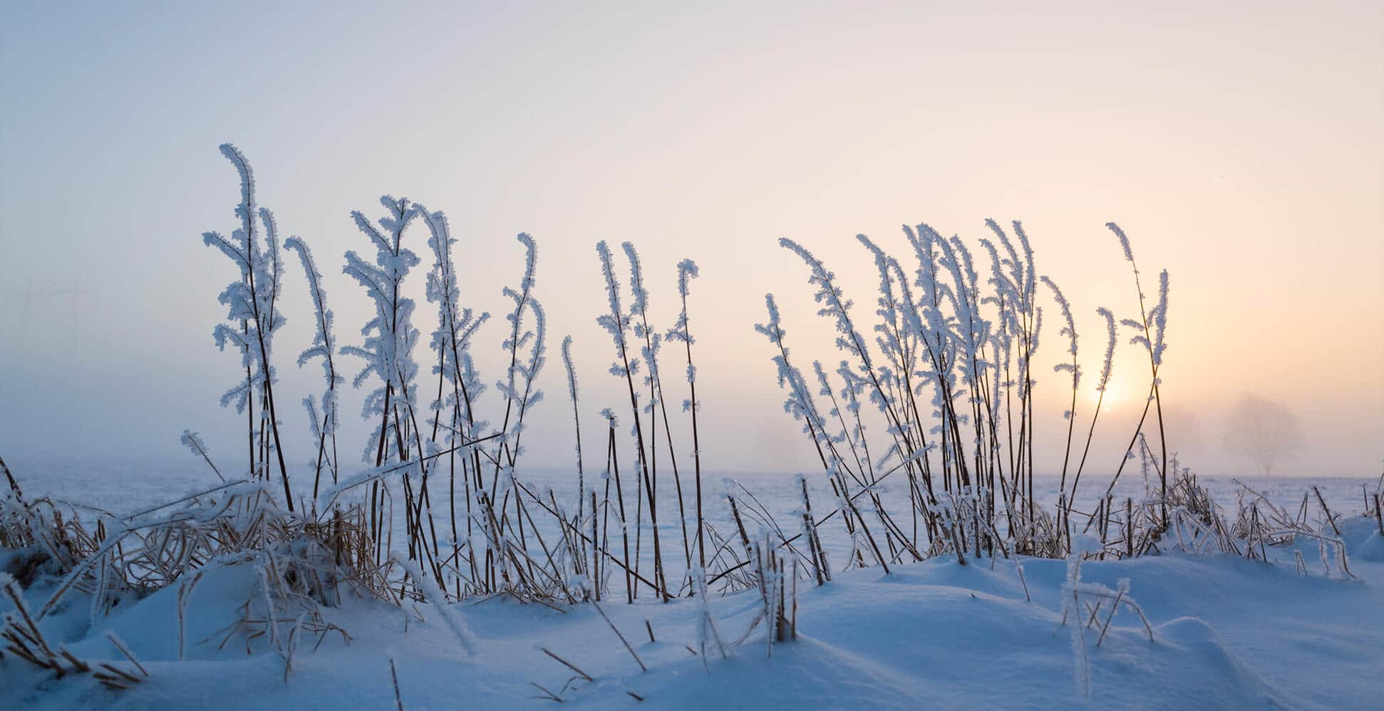 Snö Vinter Sol Husverket Fritidshus